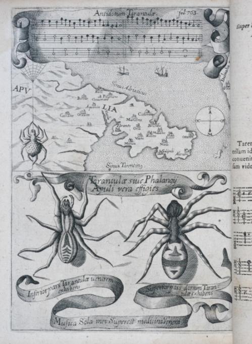 Antidotum Tarantulae : la danza terapeutica per guarire dal veleno del morso della tarantola - stampa del XVII secolo