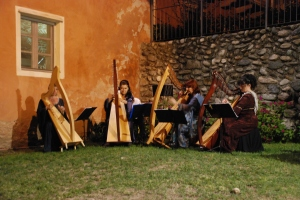 musica d'arpa durante la cena medievale - Candia Canavese (TO)