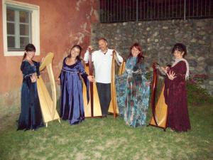 ensemble di arpe celtiche