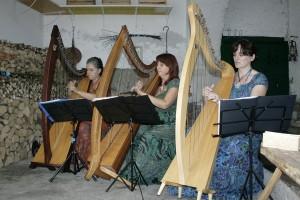 Ensemble di arpe celtiche ad Artogne
