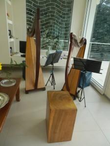 Le arpe del Cerchio delle Fate a Lerici (SP) Festa di compleanno privata