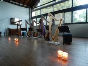 Ensemble di arpe celtiche e voci - Patrizia Borromeo e Il Cerchio delle Fate