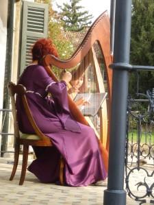 Ensemble di arpe celtiche a Villa Zari - Bovisio Masciago (MB)