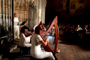 Ensemble di arpe celtiche a Santa Giulia, Bonate Sotto (BG) Foto di Danilo Pedruzzi