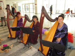 Ensemble di arpe celtiche all'interno dell'ospedale nuovo di Garbagnate Milanese (MI) 17 settembre 2016