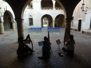 Ensemble di arpe celtiche e voci
